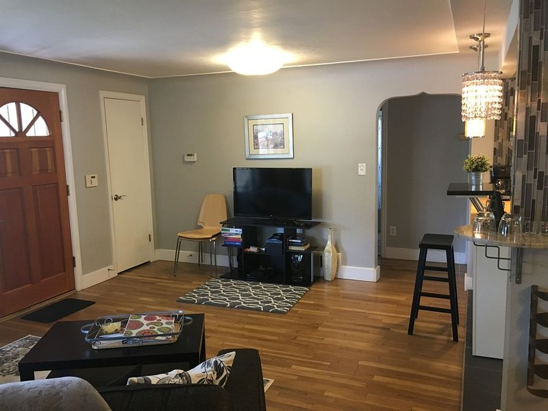 Executive Family Rental--dog friendly, DU, DTC, light rail all nearby., vacation rental in Denver