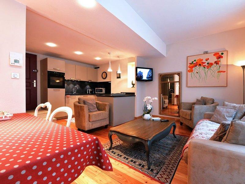 Apartment/ flat - Colmar, vacation rental in Colmar