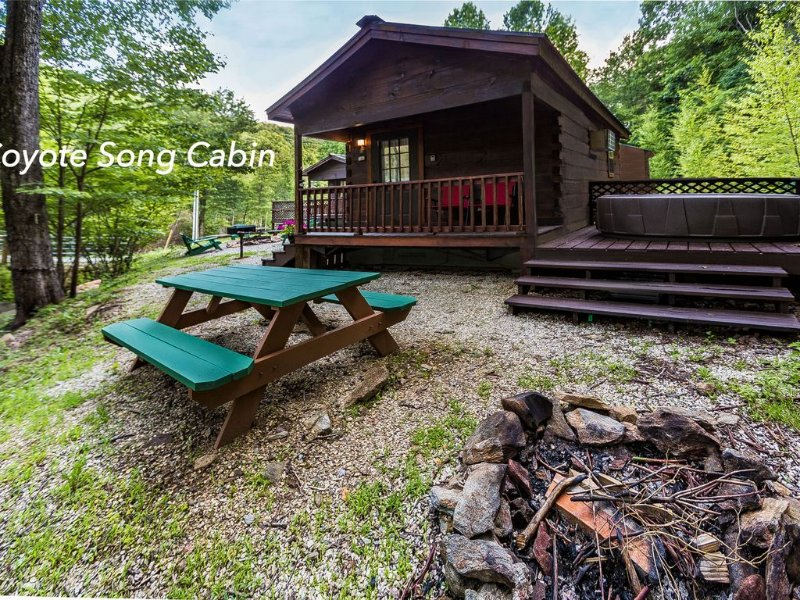 Mountain serenity close to hiking, rafting, fishing and kayaking.  'Coyote Song', holiday rental in Topton