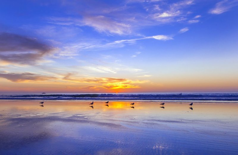 Surfer's Hideaway - Air Con - 1 Bedroom - Family Friendly!, holiday rental in San Diego
