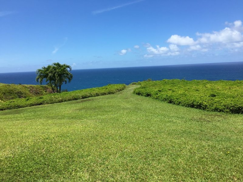 Welcome to your private (and affordable) little corner of North Shore paradise, vacation rental in Princeville