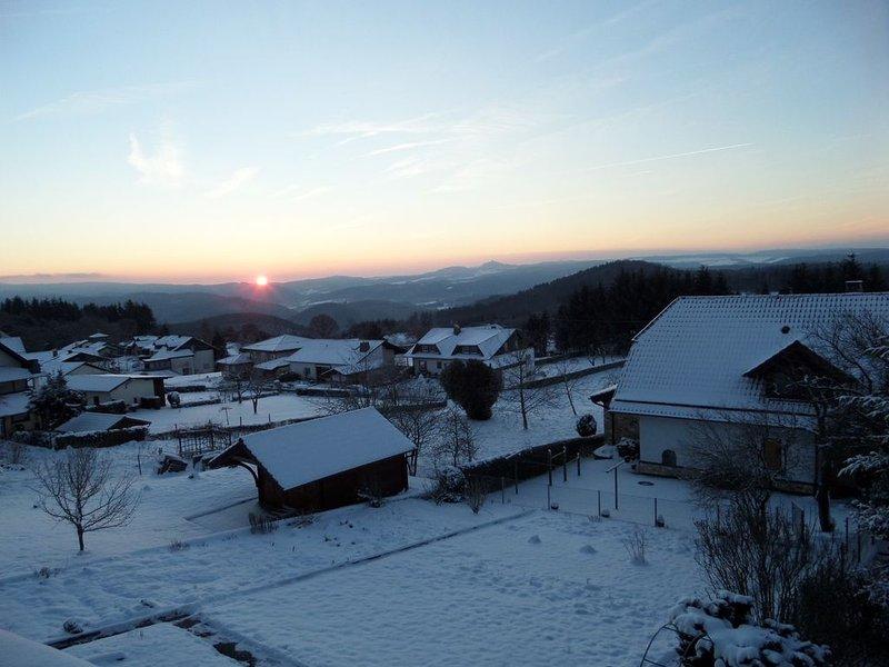 Ver na manhã do inverno