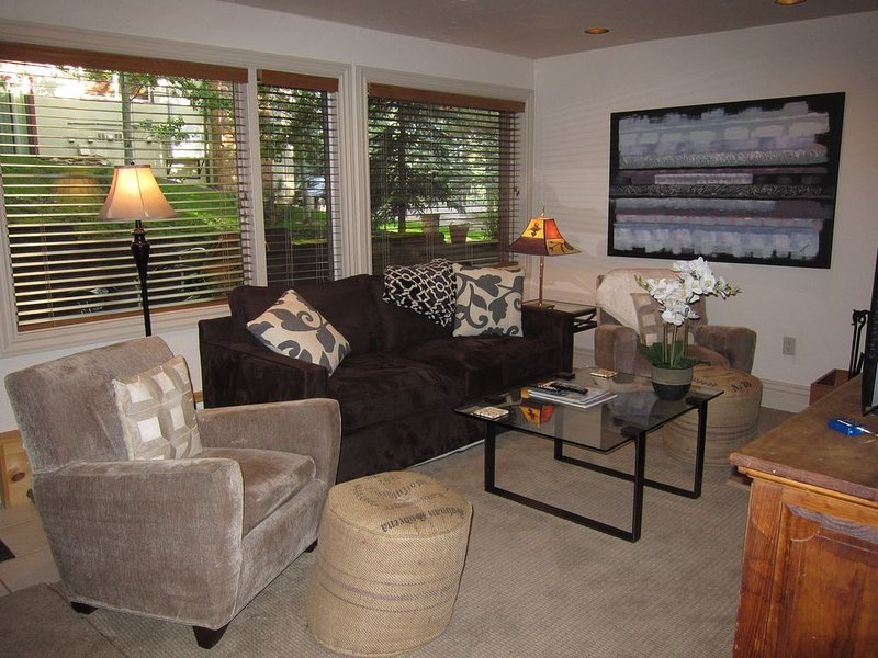 Awesome Location, Well Stocked, Very Clean!, holiday rental in Aspen