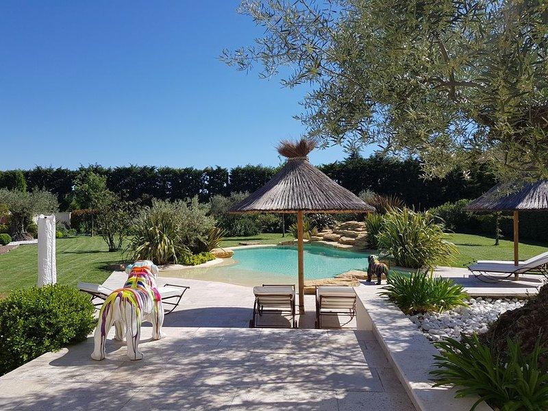 bastide provençale avec piscine forme libre chauffée, vacation rental in Chateaurenard