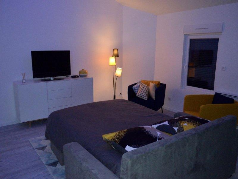 LE GITE SAINT - MARTIN, holiday rental in Marne