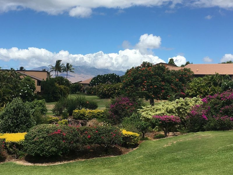 View of the West Maui Mountains and the lush gully from the lanai.