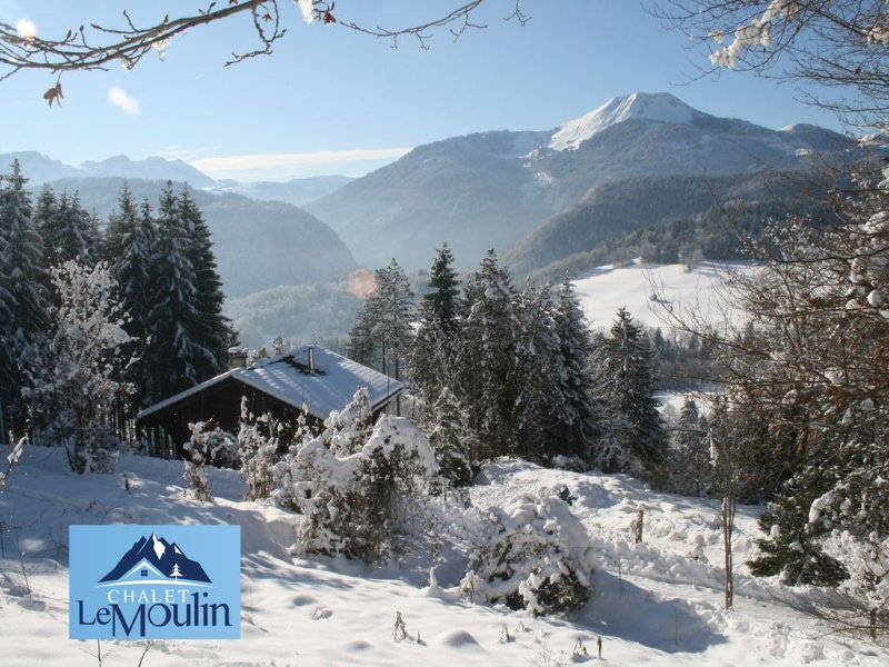 Idyllic mountain views, peaceful, wood-fired hot tub, tree house = Alpine bliss!, holiday rental in Megevette