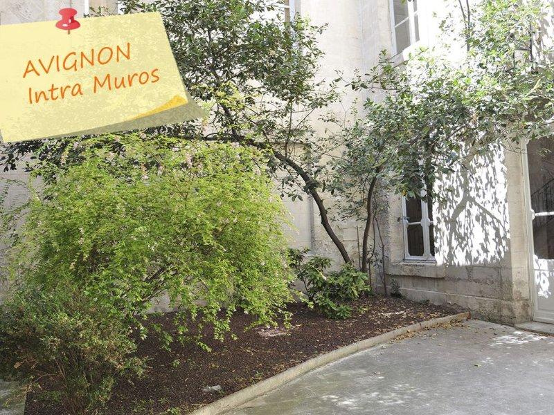 Appartement Centre AVIGNON  Face aux Halles Accueil prévu à l'arrivée, vacation rental in Avignon