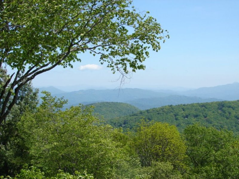 'Above the Clouds at Beech', holiday rental in Beech Mountain