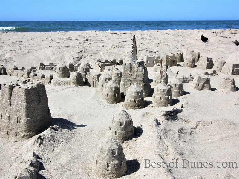 """""""Game of Pajaro Dunes"""" --The land of Pacificeros?  See what we did there?"""