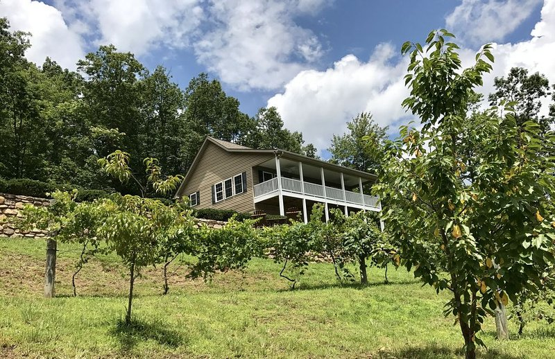 Social distance mountain home Asheville Vineyards View Hot Tub Theater Fire Pit, vacation rental in Bat Cave
