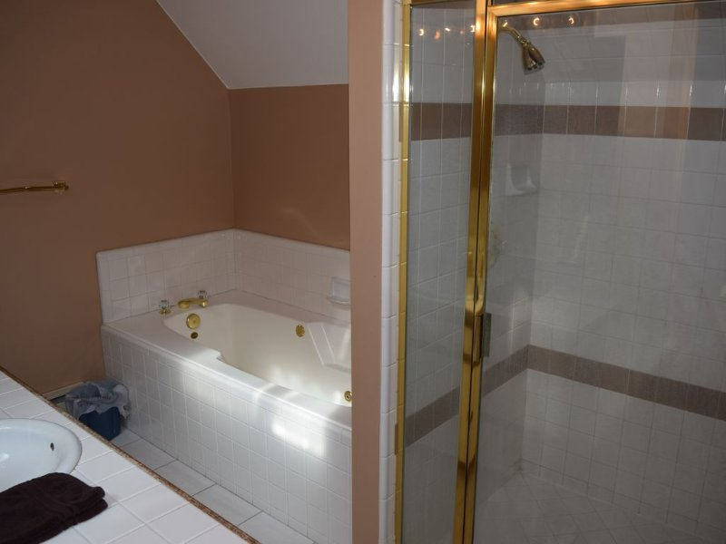 loft bathroom with jetted tub and walk in shower
