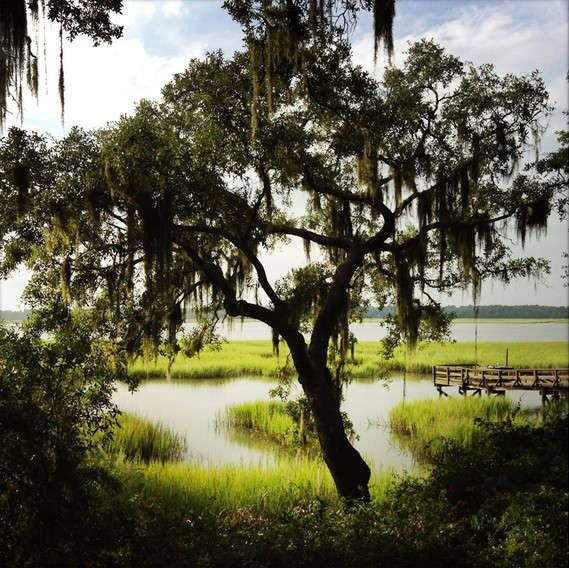 Waterfront Artists' Retreat, vacation rental in Beaufort