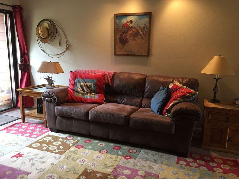 2/2 Condo in The Heart of the Rockies!Springbreak Specials!, holiday rental in Frisco