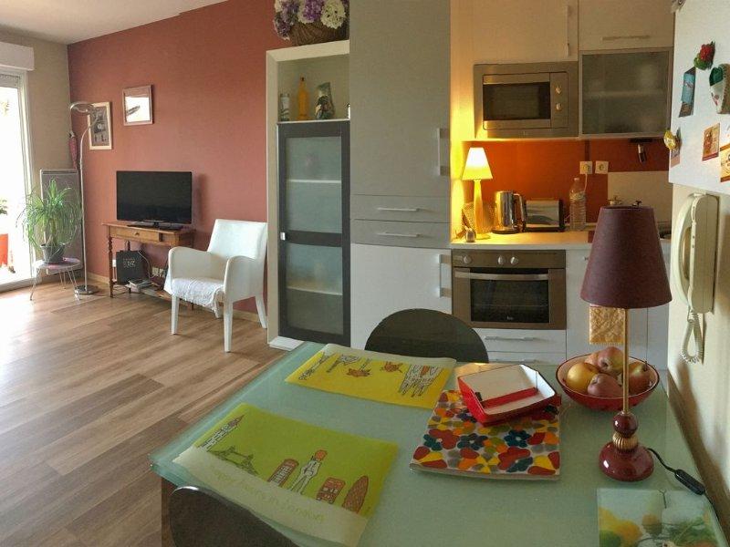 Hendaye. T2  coquet avec terrasse et  parking privé, tout confort, holiday rental in Hendaye