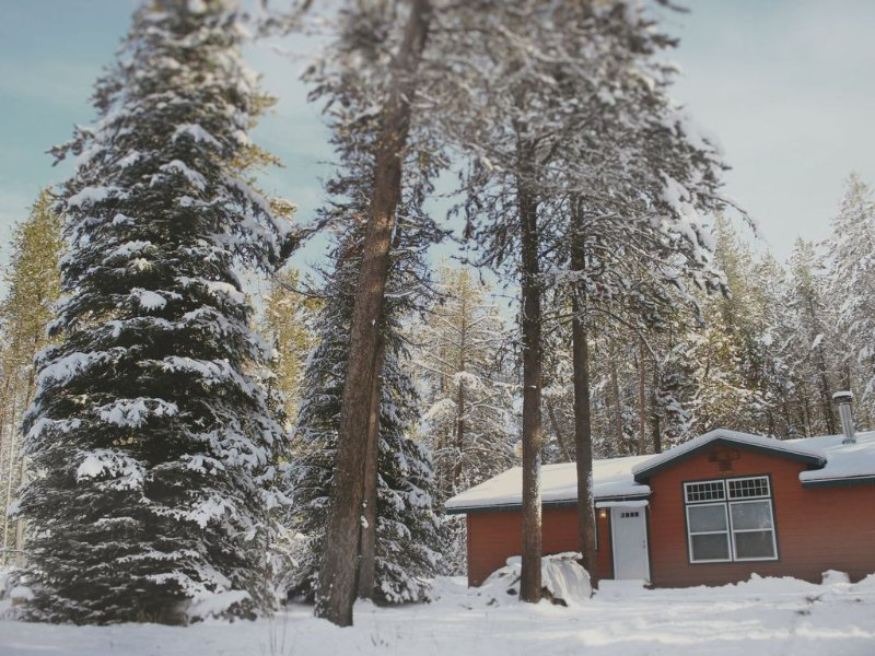 Cozy Home in the Woods 3 Bedroom 2 Bathroom Near Lake Cascade Sleeps 8, alquiler vacacional en Donnelly