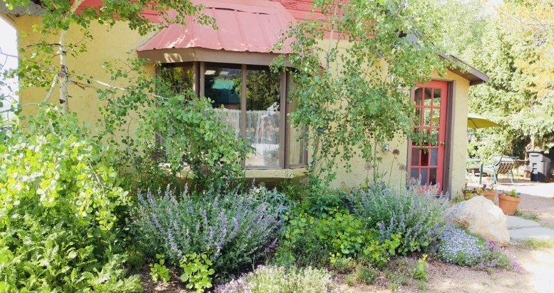 Cozy Miner's Cabin, mid summer
