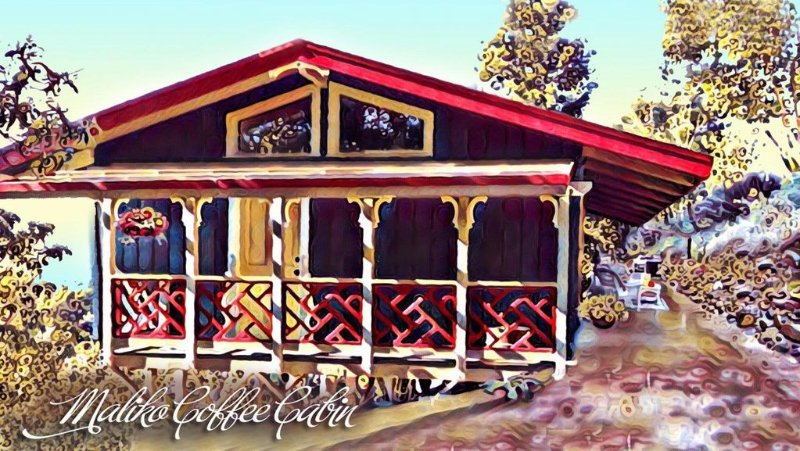 Ocean View Cabin located on Organic Coffee Farm with Hiking Trails, alquiler de vacaciones en Makawao