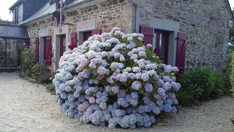 Chambre d'hotes en vue du château de La Roche Jagu , proche Pontrieux-Paimpol, holiday rental in Pontrieux