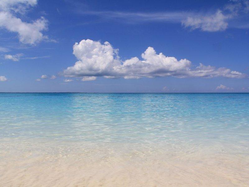 Classé n ° 1 belle plage dans le monde ... Grace Bay