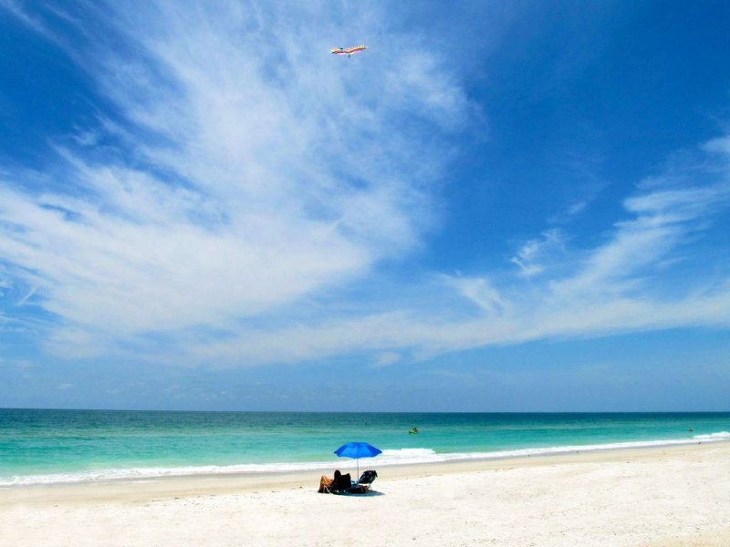 Tropical Waterfront/ Solar Heated Pool/Dock/lift, fishing,Pet Friendly, alquiler de vacaciones en Terra Ceia