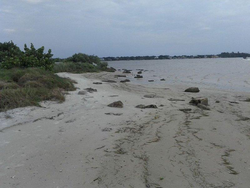 Beach at Emerson Point Preserve.