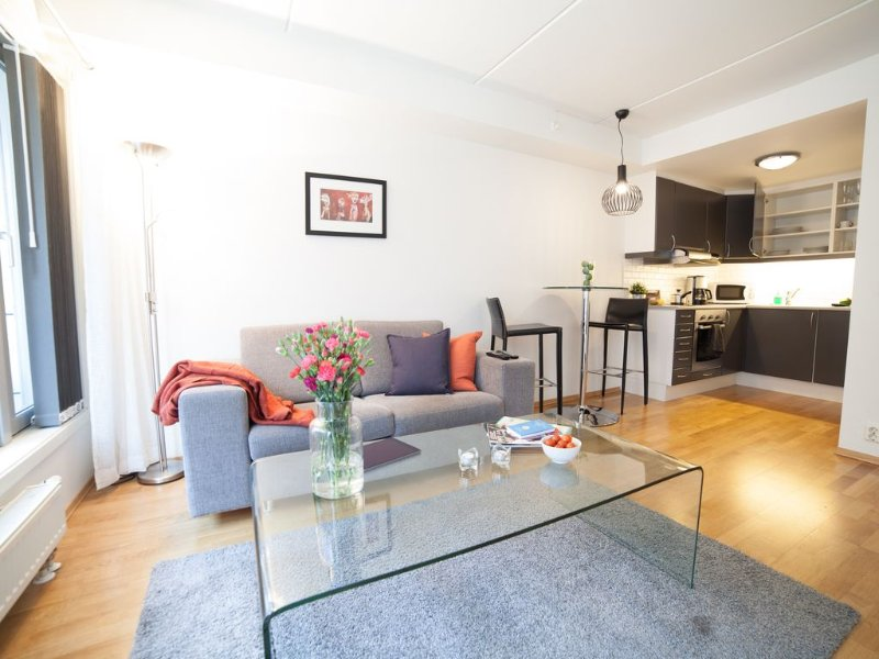 Central and modern apartment. Fully equipped and furnished., alquiler vacacional en Oslo