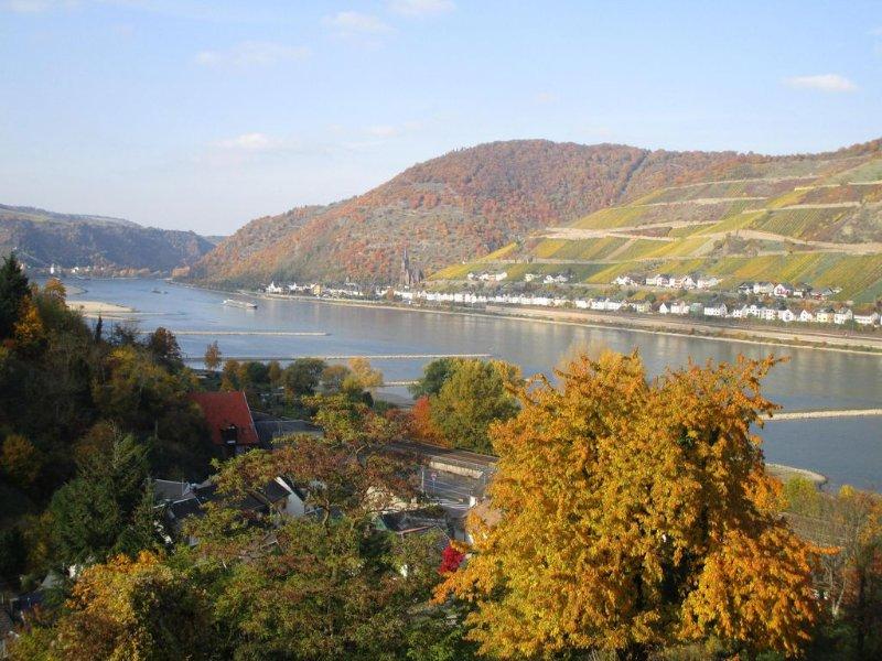 Buntgefärbte Weinberge von Oktober bis November laden zum Wandern ein