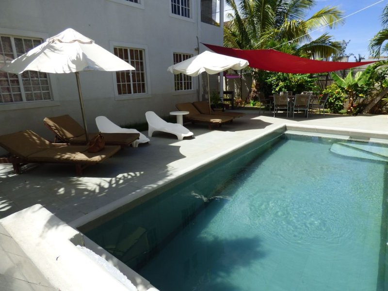 Palm Villa appartement - piscine - Trou aux biches, holiday rental in Pamplemousses District