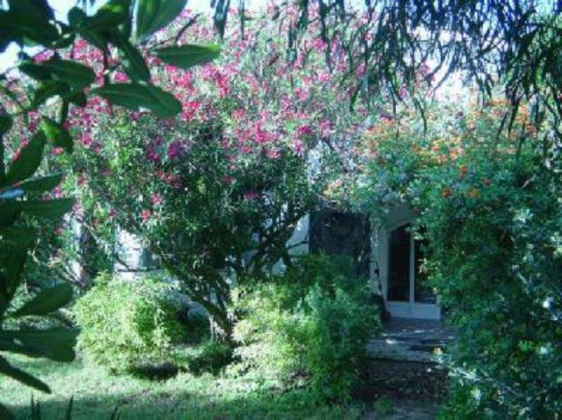 Roma, casa sul mare con giardino, sulla duna di sabbia a 40 km da Roma, holiday rental in Valli di Santa Lucia