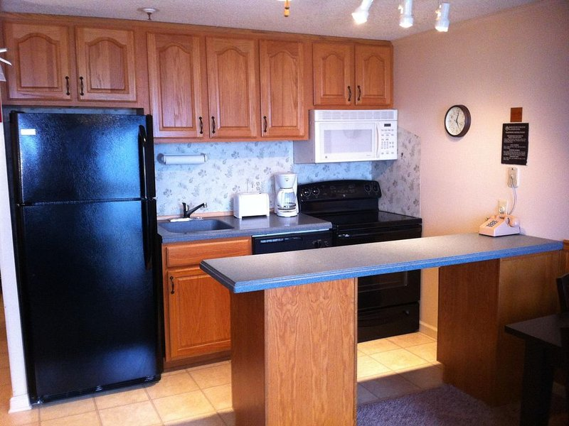 2BDR SlopeSide Renovated Family-Focused at Village - Sleeps 7, location de vacances à Snowshoe