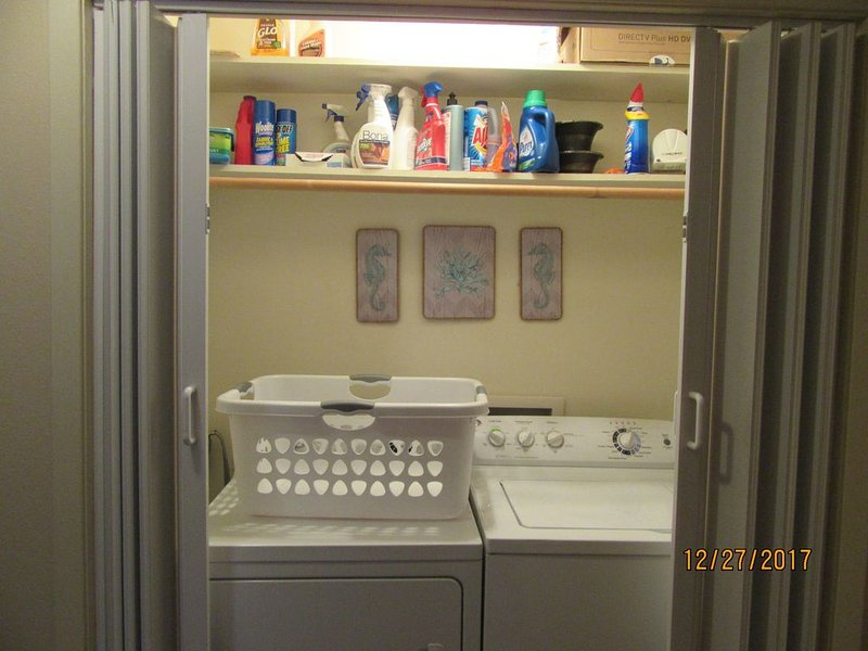 Laundry Room - washer and dryer --  I need to organize the cleaning supplies for you.