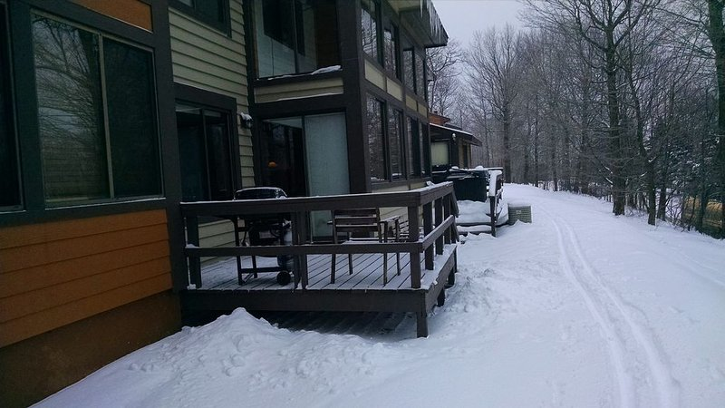 Rear deck with gas grill. Make your own XC ski tracks through the neighborhood!