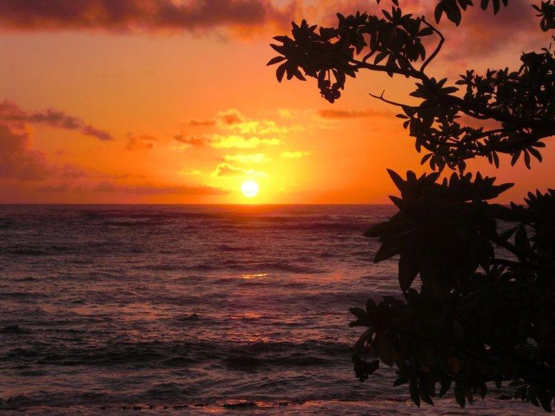 Sunsets par nuit garantis
