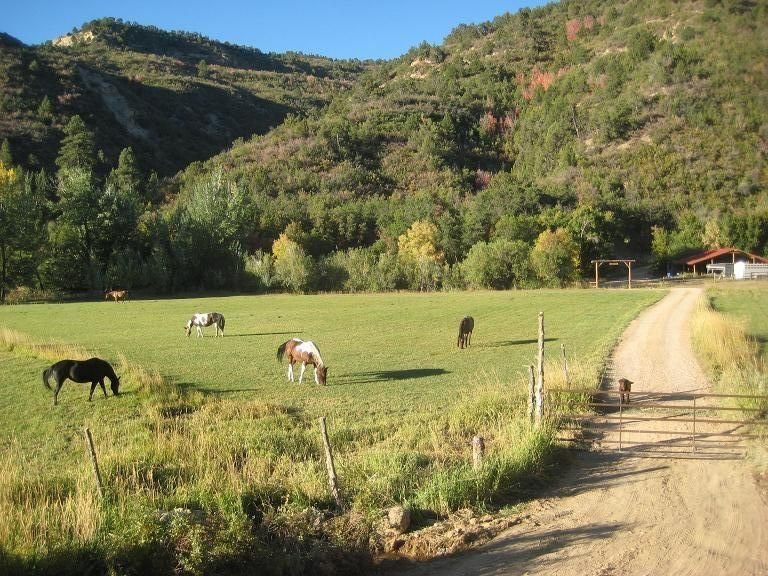 Quiet Canyon, Starry Nights * HappyOurs Ranch Bunkhouse between Zion & Bryce, holiday rental in Mount Carmel