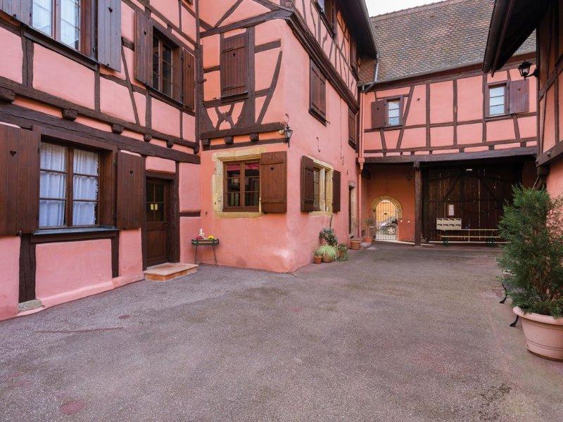 Gîte appartement ** centre historique de Colmar (parking gratuit aux abords), Ferienwohnung in Colmar