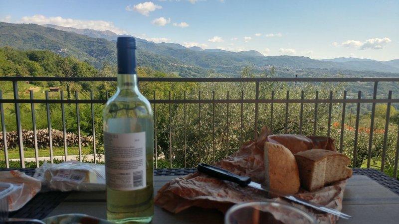 Amazing views from this splendid 3 bedroom villa in Lucca region of Tuscany, aluguéis de temporada em Molazzana