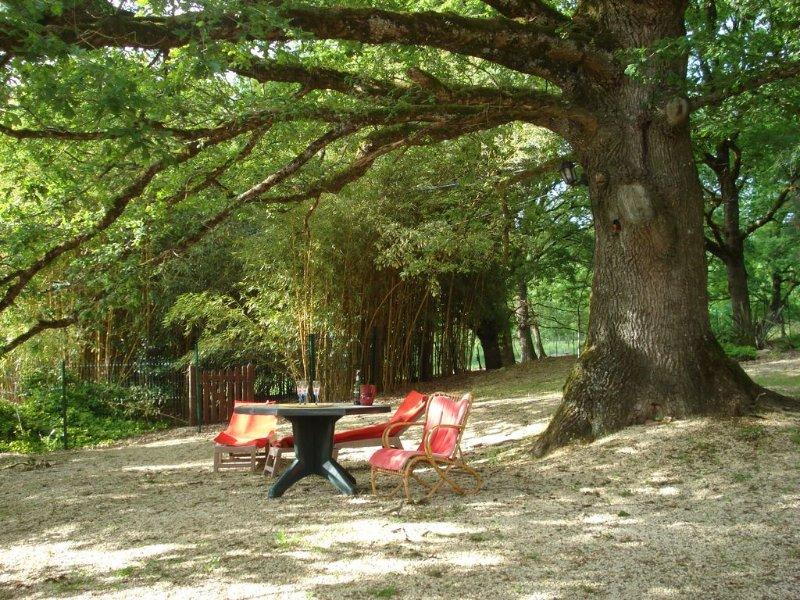 Gîte de charme Idéal pour le repos   Vaste Parc arboré Tourisme, holiday rental in Villereal