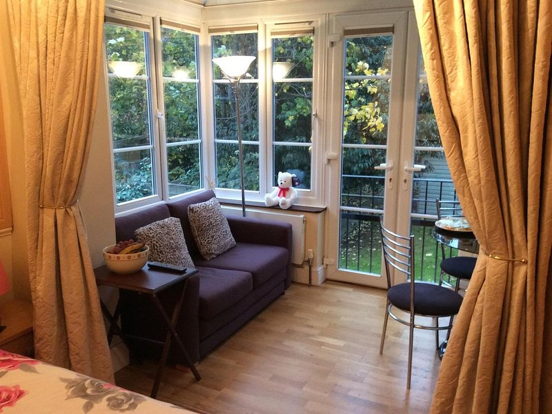 Small Luxury Apartment, Central London, holiday rental in Brent