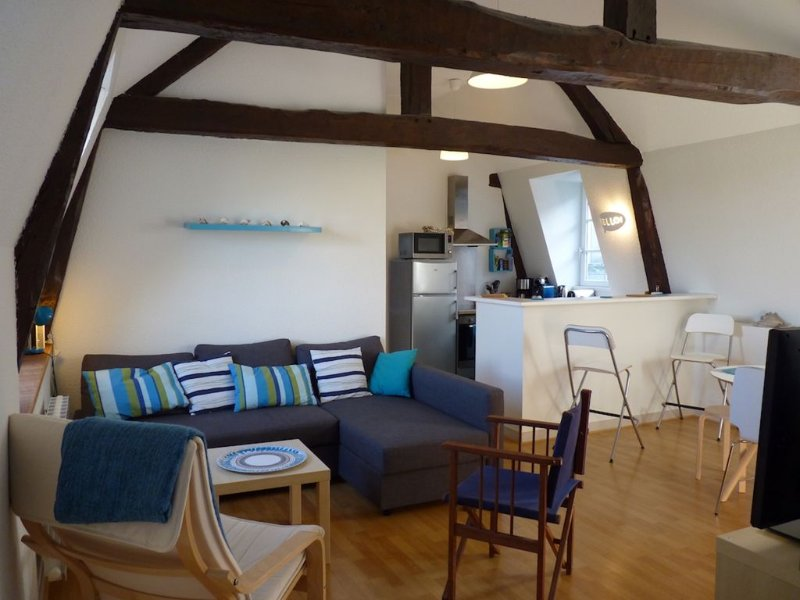 Superbe appartement lumineux dans un immeuble historique, holiday rental in Calvados