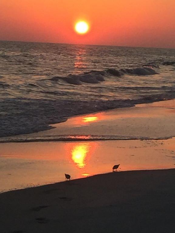 Solnedgång på stranden.