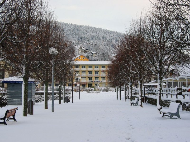 Studio apartment for 2 P - south facing balcony w, holiday rental in Gerardmer