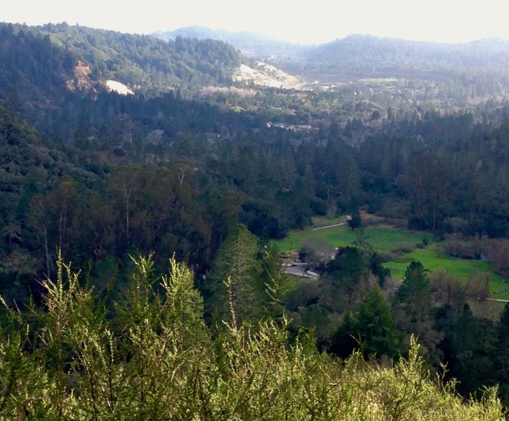 Birdsong, Deer, Wild Turkeys, White Clouds, Blue Skies, Starlight, Tranquility.., holiday rental in Scotts Valley