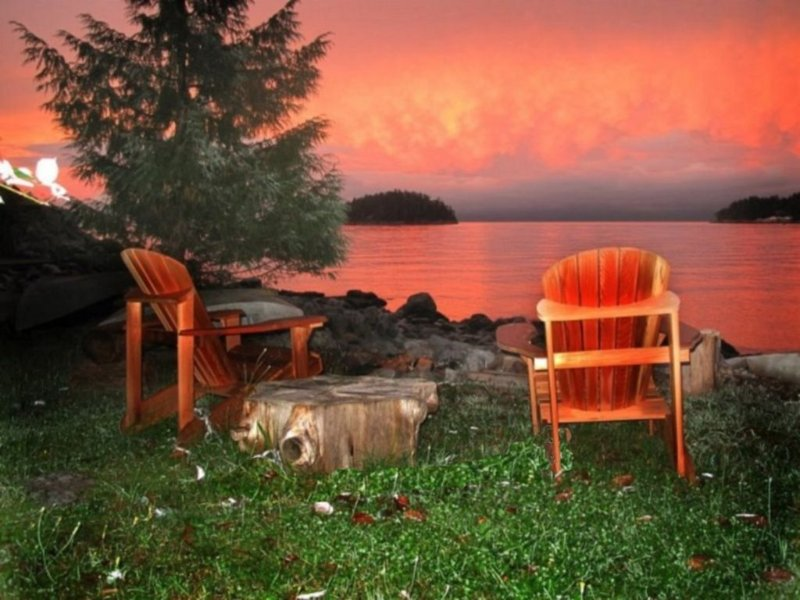 Waterfront Cottage Overlooking The Beautiful Malaspina Strait, vacation rental in Egmont
