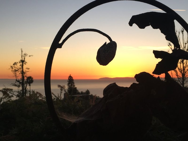 Private Catalina Sunsets with indoor/outdoor living., vacation rental in Laguna Beach