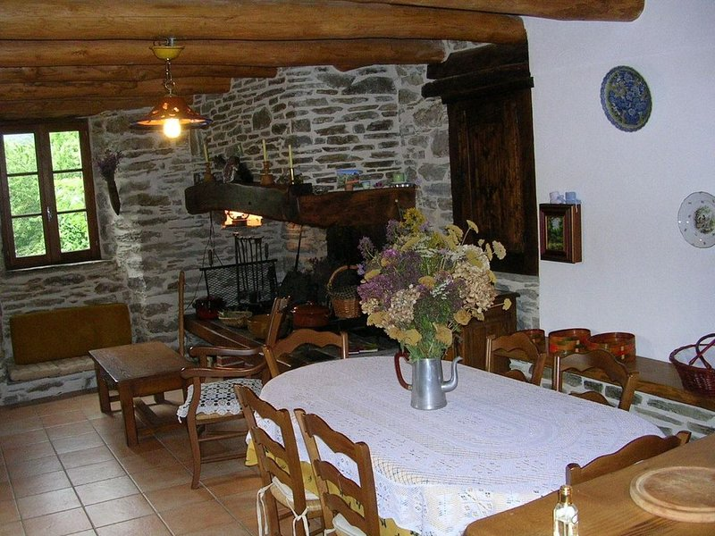 FEATURES OF HOUSE ST ANDRE DE LANCIZE, holiday rental in Lozere
