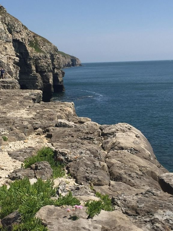 The purbeck coast is stunning