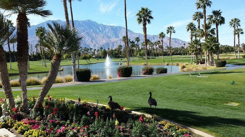 Zen Like-Luxury Desert Princess Condo with Great View, holiday rental in Cathedral City