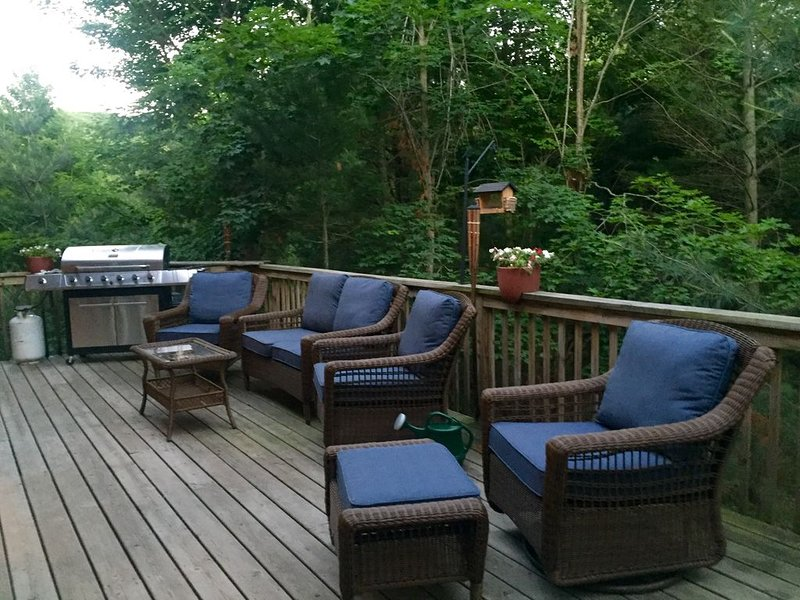 Sleeping Bear Dunes Hidden Gem ~ Perfect Family Getaway!, holiday rental in Maple City