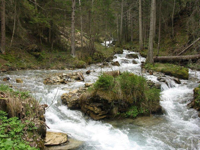 Summer Walk: brook near the Jairaz